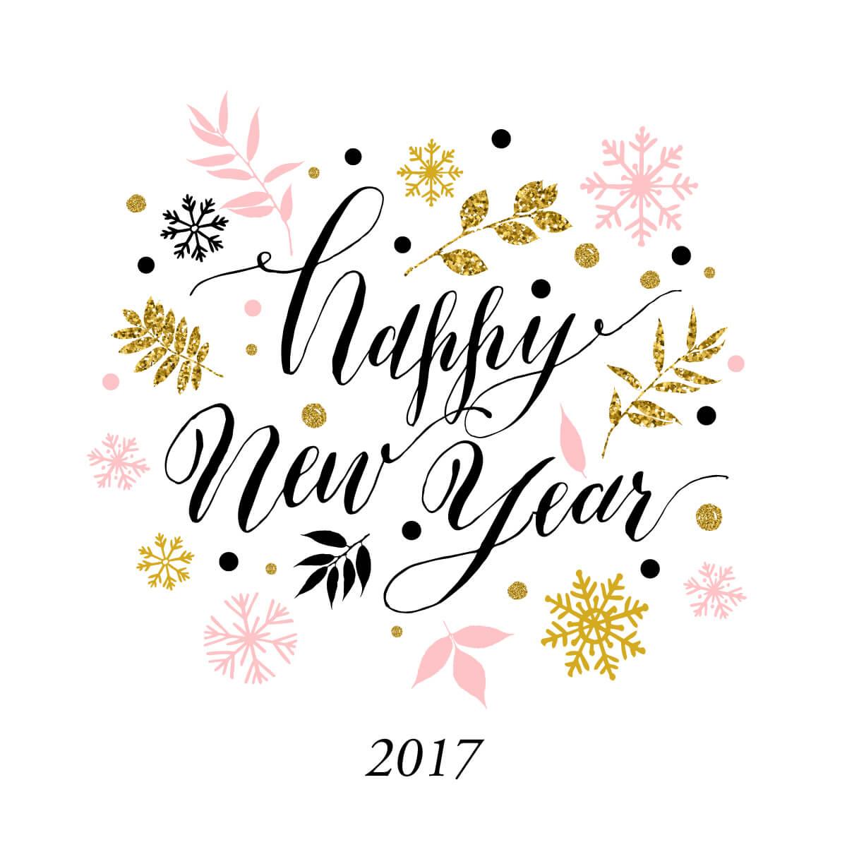 【謹賀新年 2017】新年のご挨拶